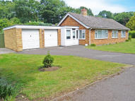Detached Bungalow for sale in Hall Park, Great Barton...