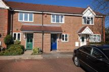 Terraced house to rent in Williamson Way...