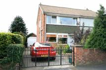 semi detached house for sale in Ambrose Avenue, Hatfield...