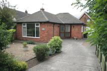 2 bed Detached Bungalow in Coningsburgh Road...