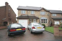 4 bed Detached property in Laurel Avenue, Cusworth...