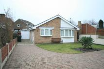 Detached Bungalow in Sheepbridge Lane...