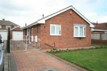 2 bedroom Detached Bungalow in Beechwood Close...
