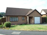 Detached Bungalow for sale in Daffodil Wood...