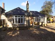 4 bed Detached Bungalow in St. Swithuns Road South...