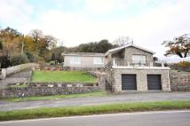 3 bed Detached Bungalow in Yr Hafan, Llangain...