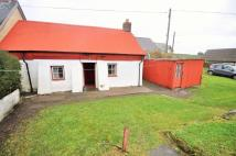 Semi-Detached Bungalow in 2 Clun Cottages...