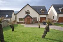 4 bedroom Detached house for sale in 4 Trem Y Cwm, Llangynnin...