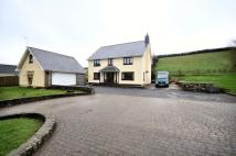 5 bed Detached house in Bryn Briallu, Broadway...