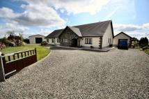 Farm House for sale in Gwynfryn, Henllan Amgoed...