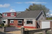 2 bedroom Semi-Detached Bungalow in Cortachy Avenue, Carron...