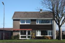 Detached property for sale in Lodge Drive...