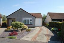 Detached Bungalow in Millar Place, Larbert...