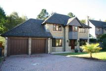5 bedroom Detached house in 11 Knowle Green Dore...