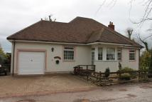 Detached Bungalow for sale in Templehall Coldingham...
