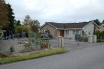 Detached Bungalow for sale in Bogmoor Road, Bogmoor...