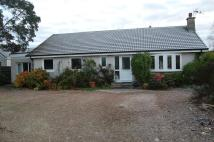 4 bed Detached Bungalow in The Muir, Bogmoor...