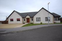 4 bed Detached Bungalow for sale in Steading View...