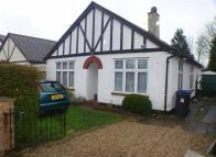 Detached Bungalow to rent in Chertsey Road, Byfleet...