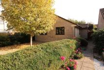 2 bed Detached Bungalow in Paulton, Near Bristol