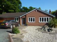 3 bed Detached Bungalow in Colt House Close...