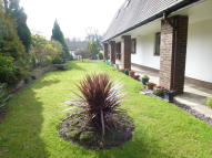 Retirement Property for sale in CHESTNUT COURT, Leyland...