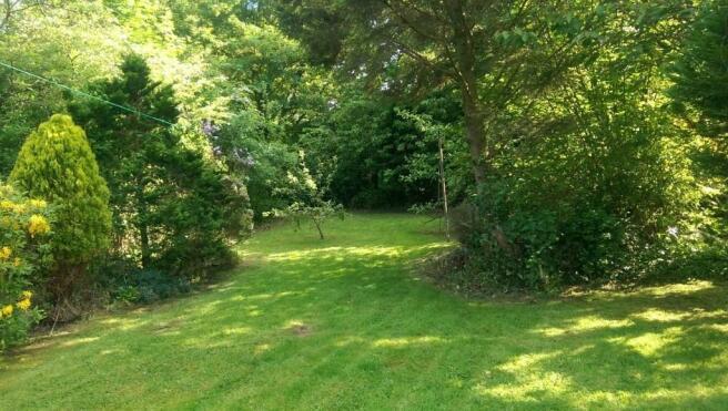 Rear Garden Pic 9