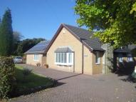 3 bed Bungalow to rent in Grangemoor Road, Morpeth