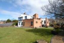 Village Road Detached house for sale