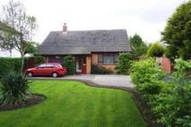 2 bed Bungalow for sale in Plymyard Avenue...