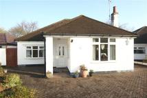 Caldicott Detached Bungalow for sale