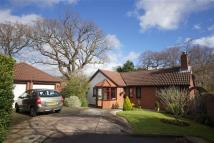 3 bedroom Detached Bungalow for sale in Dibbinview Grove