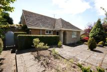 Detached Bungalow in St. Peter's Close...