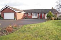 4 bedroom Detached Bungalow for sale in The Anchorage, Parkgate