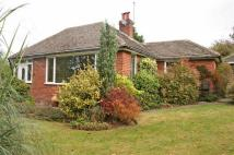 Detached Bungalow for sale in Sandy Lane, Little Neston