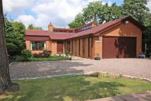 Detached Bungalow for sale in Albert Drive, Parkgate