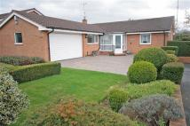 Detached Bungalow for sale in Furrocks Way, Ness