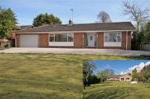 Detached Bungalow in Bull Hill, Little Neston