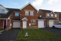 3 bedroom semi detached property to rent in Stanleyburn View...
