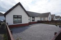 2 bed Semi-Detached Bungalow to rent in Oak Terrace, Craghead