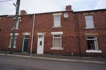 Elm Street Terraced house to rent