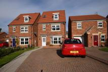 4 bed Detached house to rent in Orchard Grove, Kip Hill...