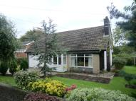 Bungalow to rent in Garstang Road East...
