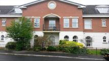 Flat for sale in Poulton Drive...