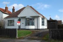 3 bed Detached Bungalow to rent in Grafton Road, Longlevens...