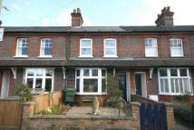 Cornwall Road Terraced property to rent