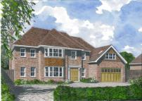 Detached home in Oak Way, Harpenden...