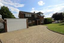 Detached house to rent in Burywick, Harpenden...