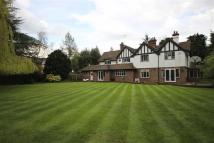 6 bed Detached property for sale in Park Avenue South...