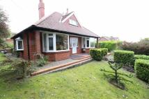 Detached Bungalow for sale in Stepney Road, Stepney...